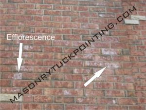 Efflorescence visible on bricks 2 - Masonry and Tuckpointing Chicago