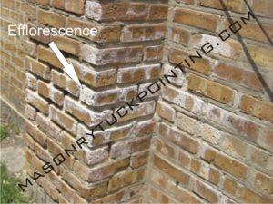 Efflorescence visible on bricks - Masonry and Tuckpointing Chicago