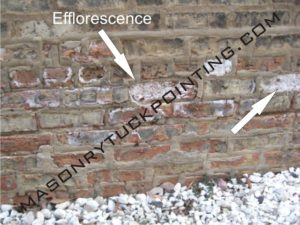How to remove efflorescence from brick surface? -Step by Step Directions