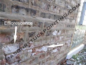 Efflorescence visible on bricks 1 - Masonry and Tuckpointing Chicago
